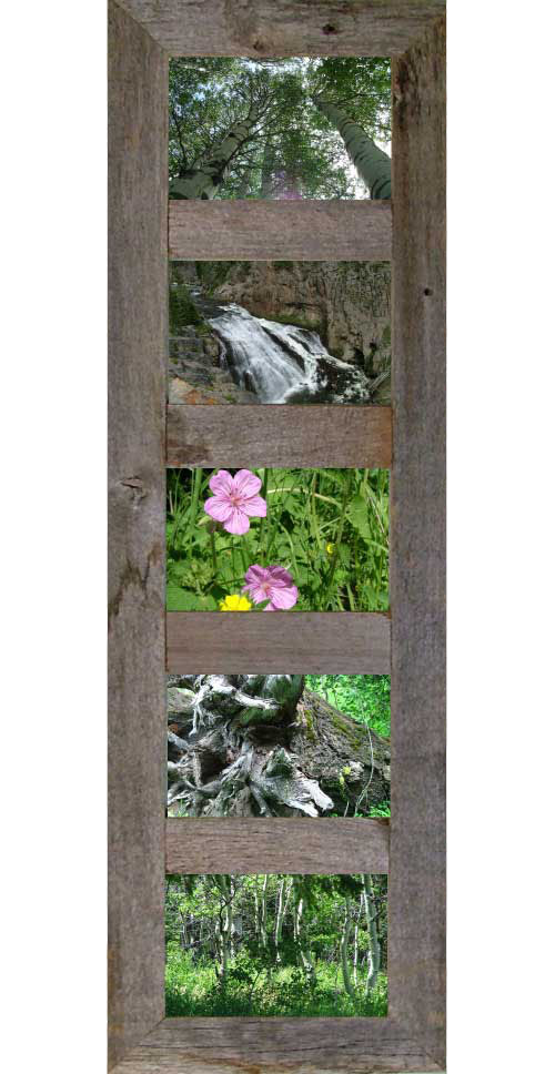 Vertical Barnwood Panel Frame For 6 4 X 6 Pictures